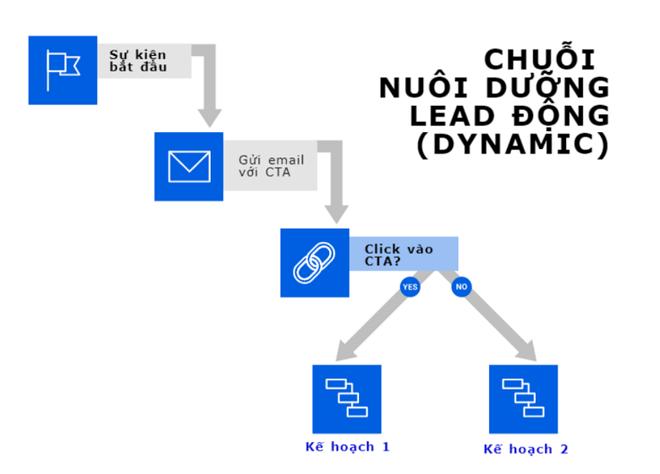 chuỗi email marketing automation