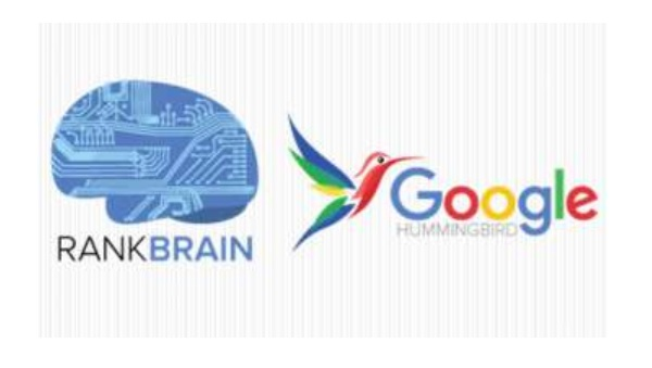 thuật toán rank brain