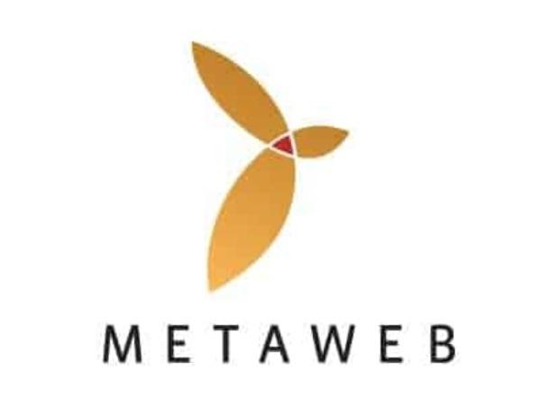 metaweb google